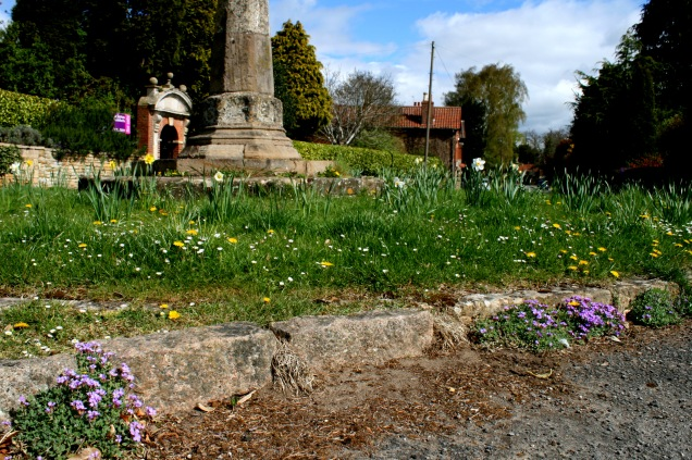 Harlaxton Monument; aubretia growing along the kerb edge, dandelions and daisys in the grass along with planted daffodils. Which are the weeds?