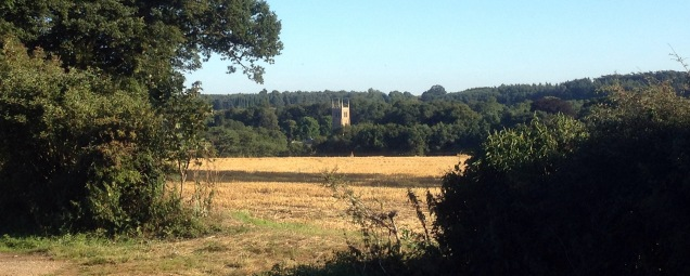 View across the fields to Denton Church