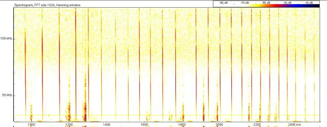 This is an extract from the echolocation files from the tunnel survey. The calls which are very long and straight (known as FM of Frequency Modulated calls) are distinctive of myotis species. This is probably Natterer's bat because the start of the call is at such a high frequency and the end is at such a low frequency. For reference, most people can hear upto about 18 kHz which would be a very high pitched sound. These calls are from well above 100 kHz and end around 30-40 kHz.