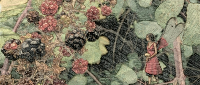blackberries...