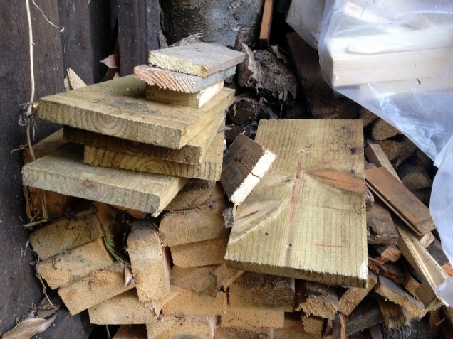 The log shed with offcuts we've been given for the log burner - but there is a Bat Box there just waiting to be built!
